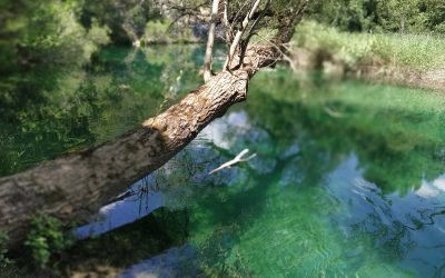 Relato: Mirada de agua